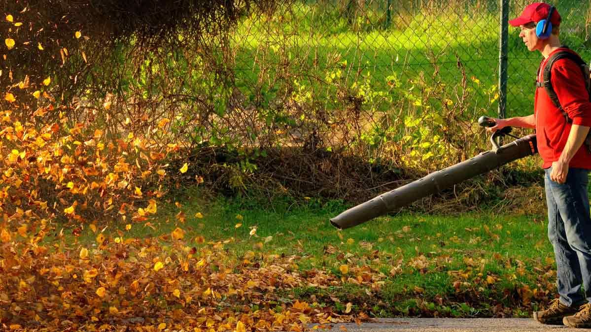 Lawn gear you need for fall cleanup
